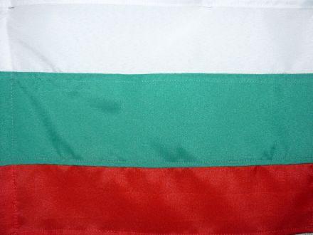 Знаме от полиестер, размер: 30/50 см
